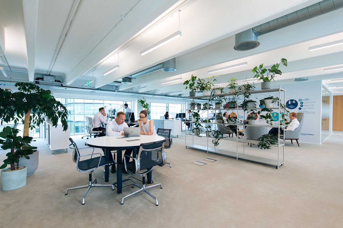 Office Fit Out Reading - Pharmacosmos (2)