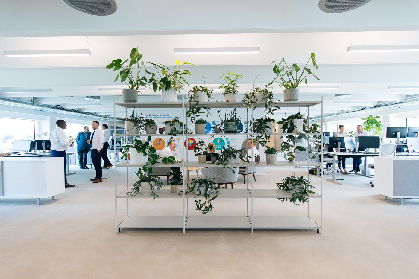 Office Fit Out Reading - Pharmacosmos (4)